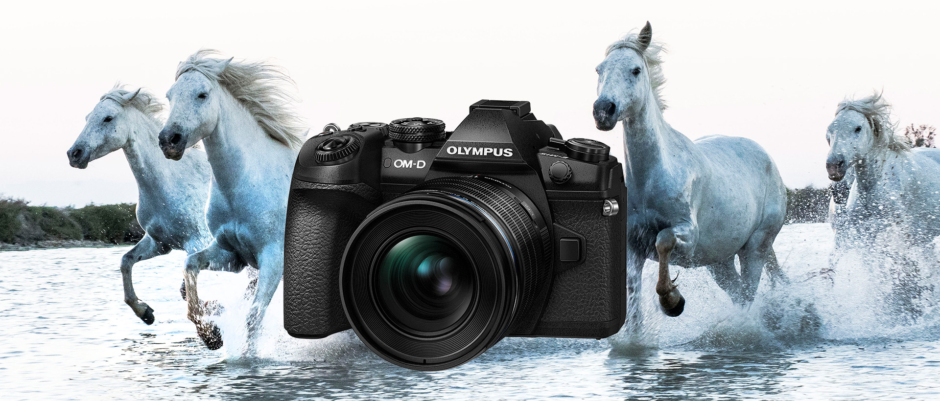 Olympus Systemkameras @ Photohaus