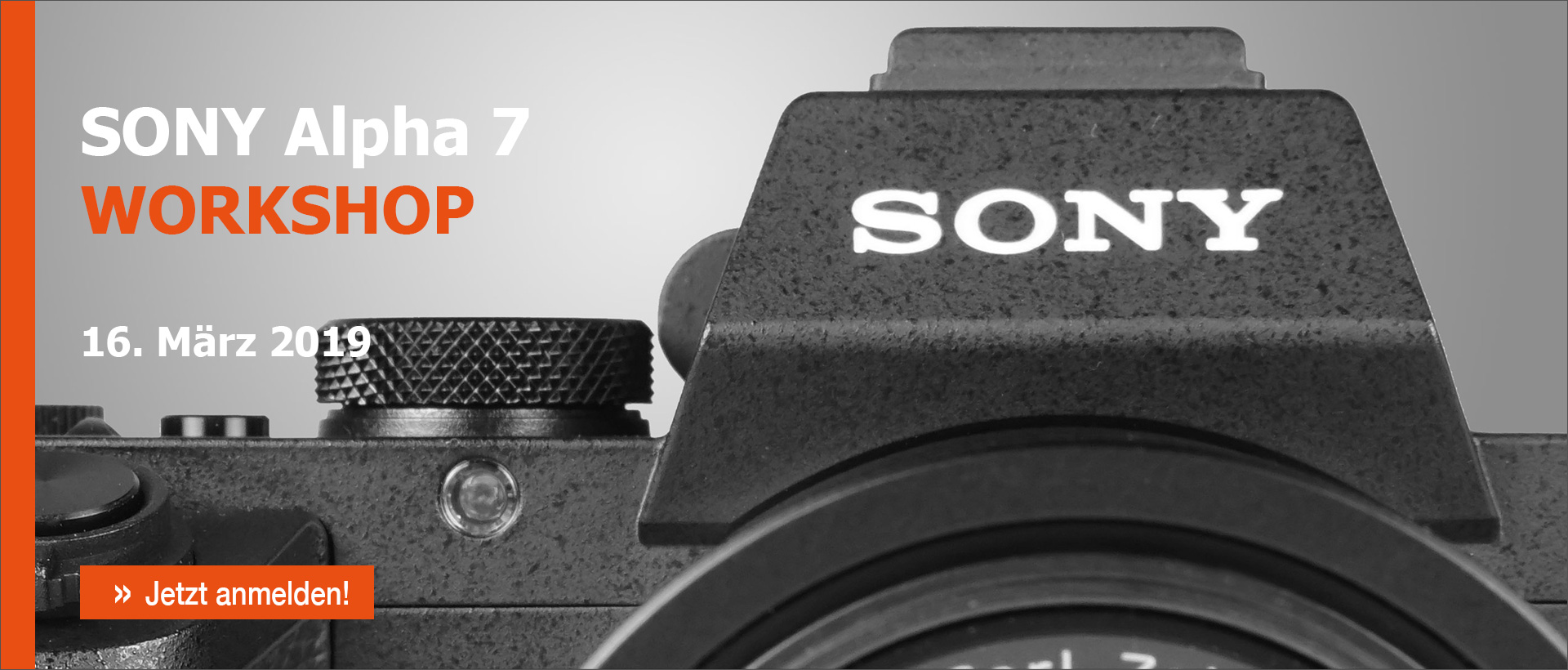 Sony Alpha 7 Workshop